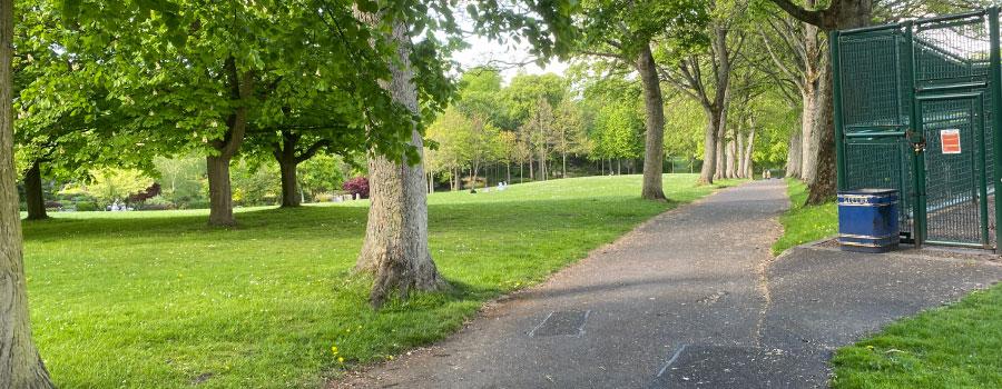 Zona verde urbana con árboles y jardines