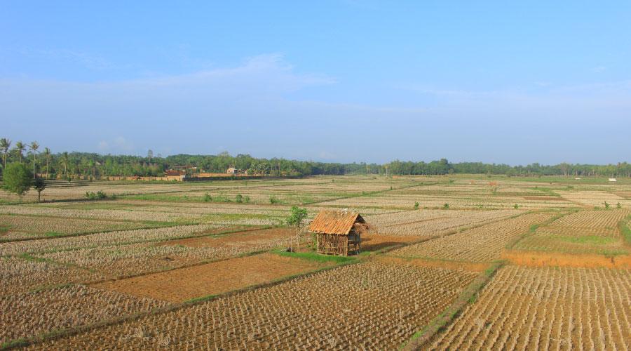 Expropiación de terreno agrícola
